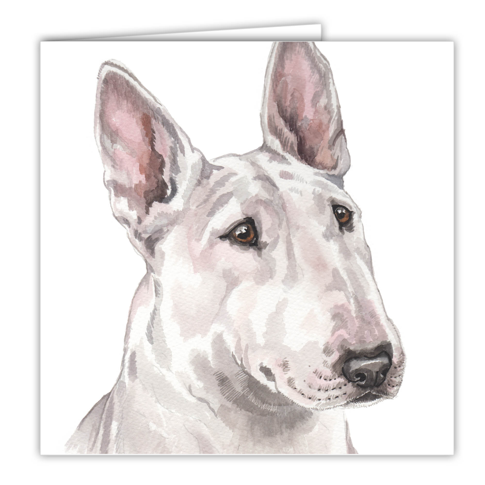 bull terrier artist english bull terrier art card greetings card ac 219 4952