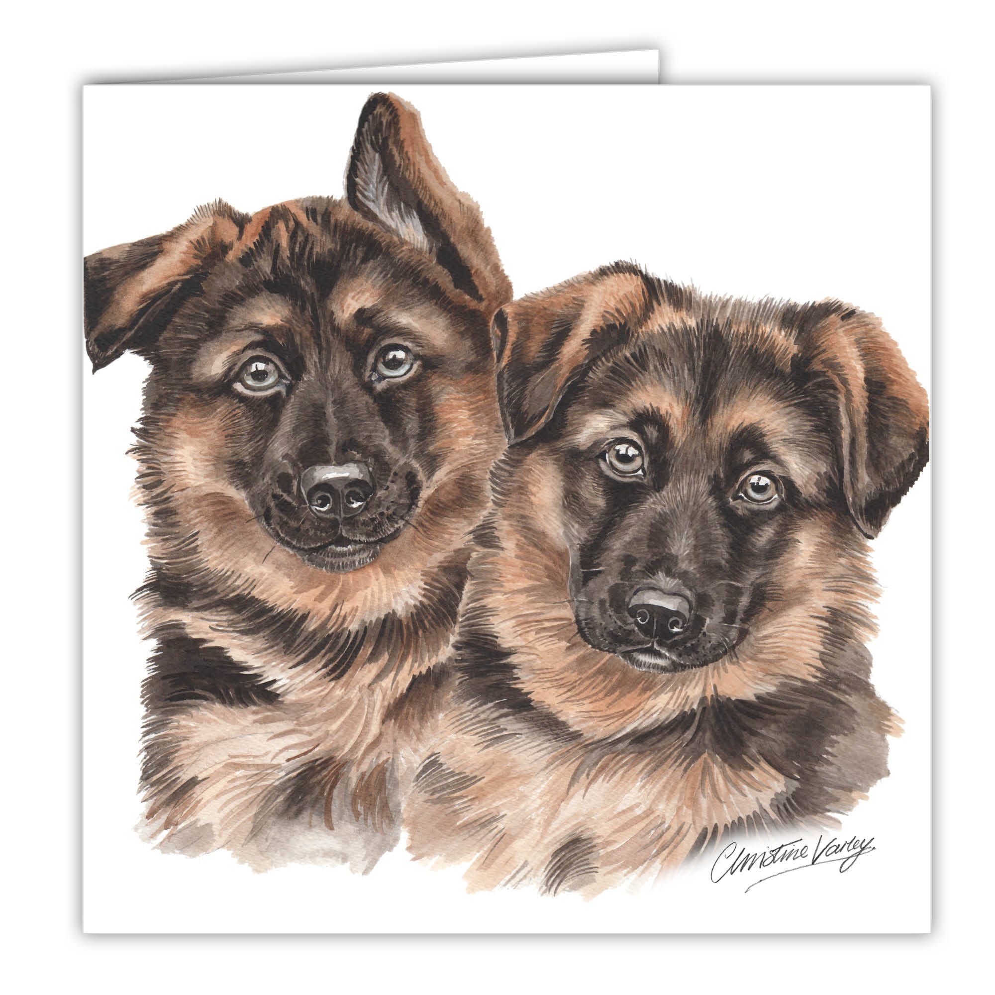 German Shepherd Puppies Art Card Greetings Card Ac Pu06 Waggydogz