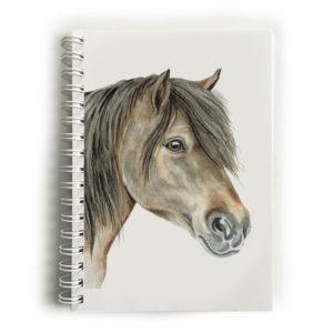 Shetland Pony Notebook