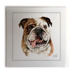British Bulldog Dog Picture / Print