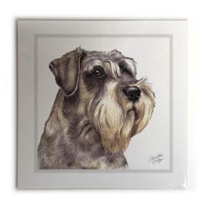 Schnauzer Dog Picture / Print