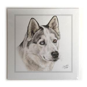 Husky Picture / Print