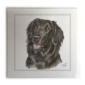Flat-Coated Retriever Dog Picture / Print