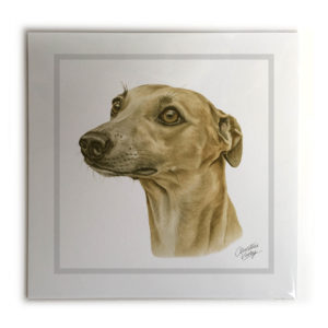 Whippet Dog Picture / Print
