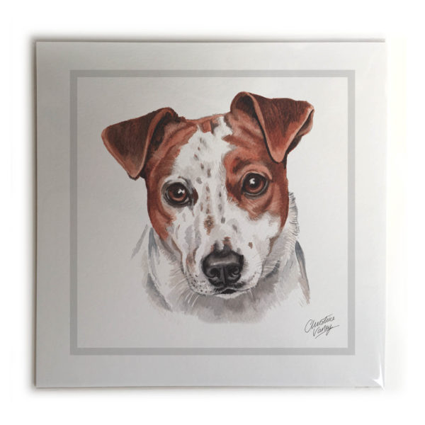 Jack Russell Dog Picture / Print