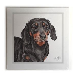 Dachshund Dog Picture / Print