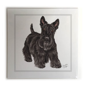 Scottish Terrier Dog Picture / Print