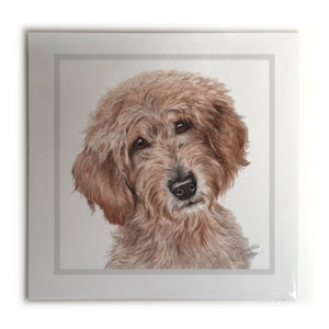 Labradoodle Dog Picture / Print