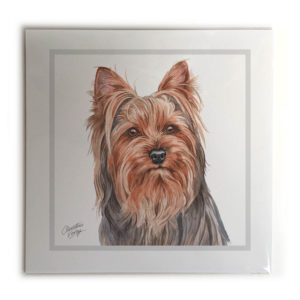 Yorkshire Terrier Dog Picture / Print