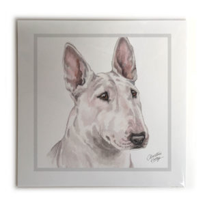English Bull Terrier Dog Picture / Print