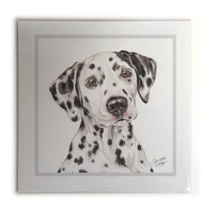 Dalmatian Picture / Print