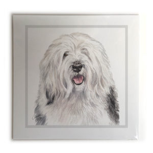 Old English Sheepdog Dog Picture / Print