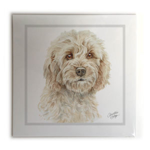 Cockapoo Picture / Print