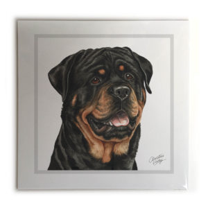 Rottweiler Dog Picture / Print