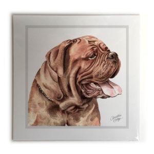 Dogue de Bordeaux Dog Picture / Print