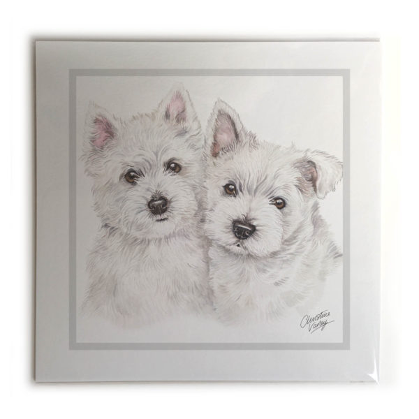 West Highland White Terrier Puppies Dog Picture / Print