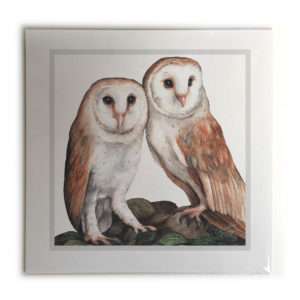 Barn Owl Pair Bird Picture / Print
